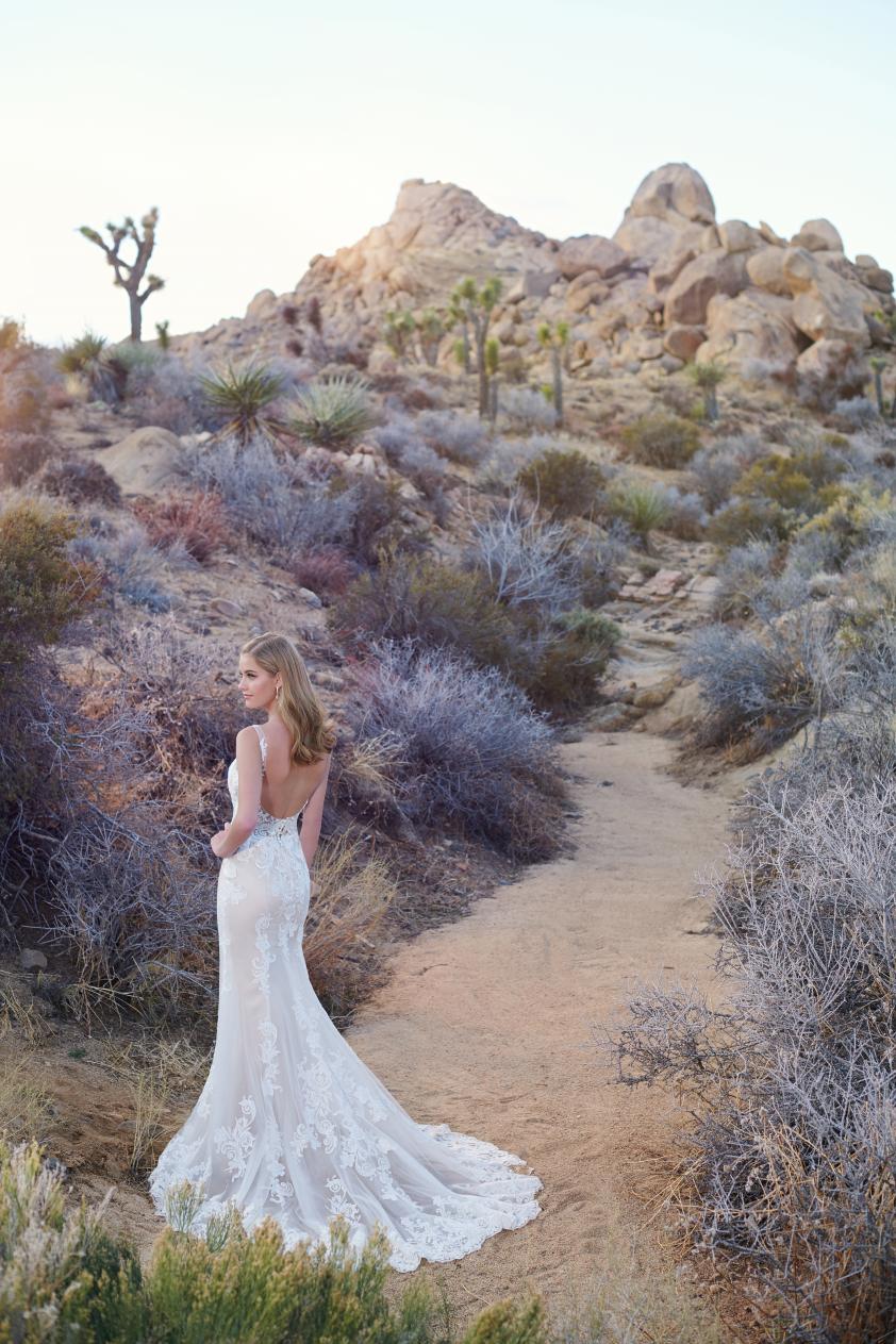 Wedding Dress MC011022BG - Dominique Levesque Bridal